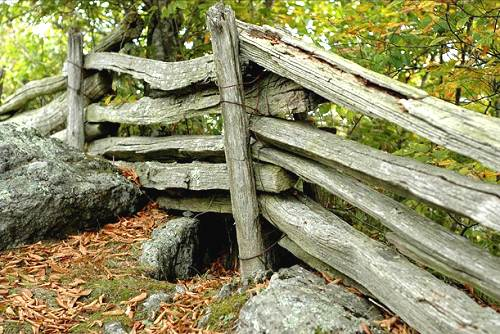 Photo Gallery of Rustic Split Rails, natural white cedar fencing