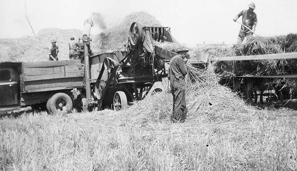 08 Threshing